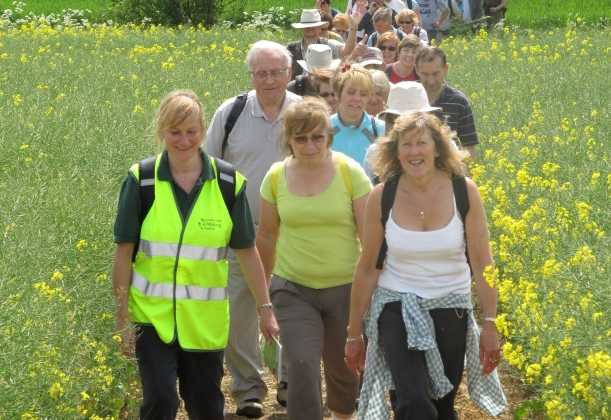 wolds-walking-festival