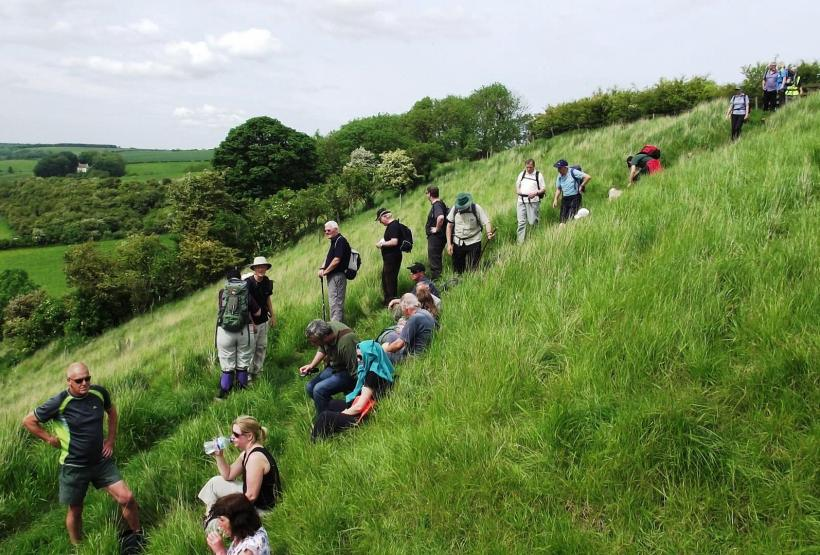 Lincolnshire Wolds Walking Festival Walkers