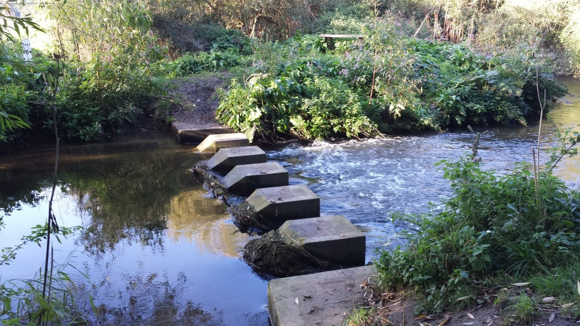 Marston Stepping Stones